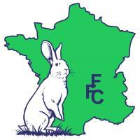 Ffc rvb 1